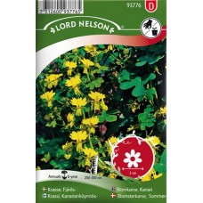Fjärilskrasse, gul