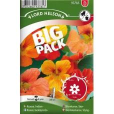 Slingerkrasse,  bl färger Big Pack