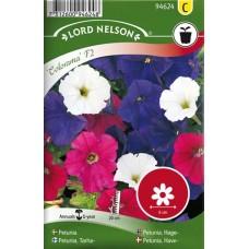 Trädgårdspetunia, Colorama F2, bl f.