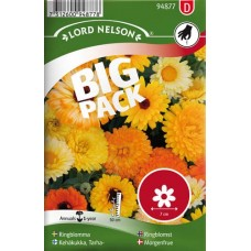 Ringblomma, bl färger, Big Pack